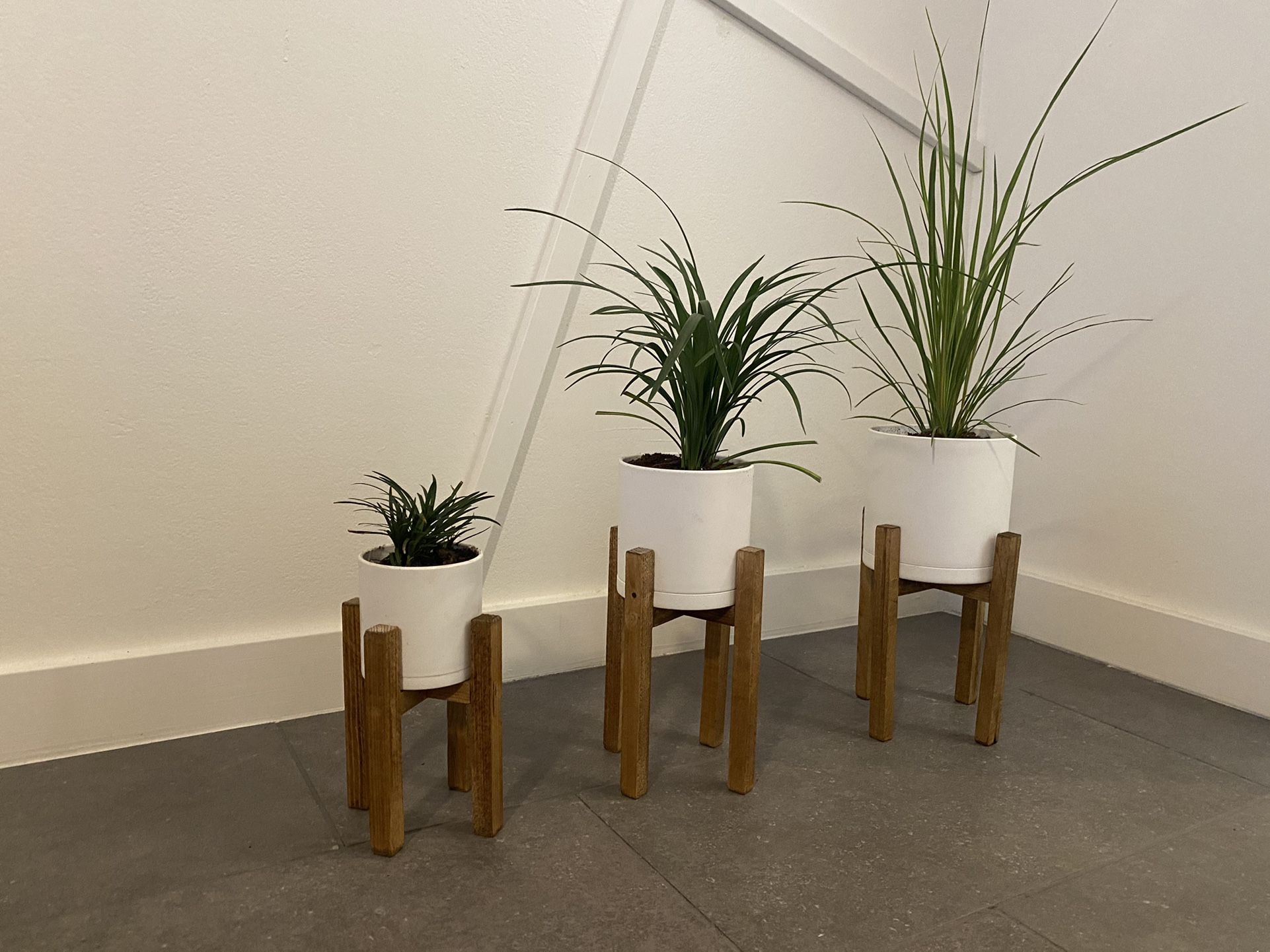 House Plants Planters and Stands Set Of 3