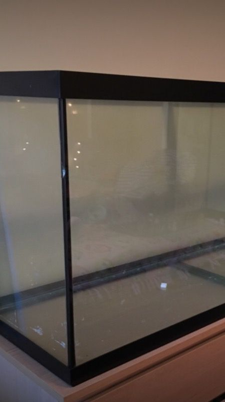 120 gallon tank and filter