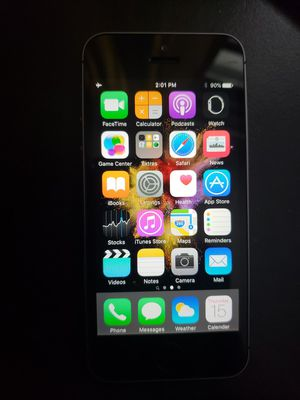 iPhone 5s for Sale in Dwight, IL