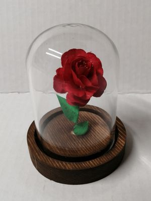 Photo New Mini Rose in Glass Dome with Wooden Base