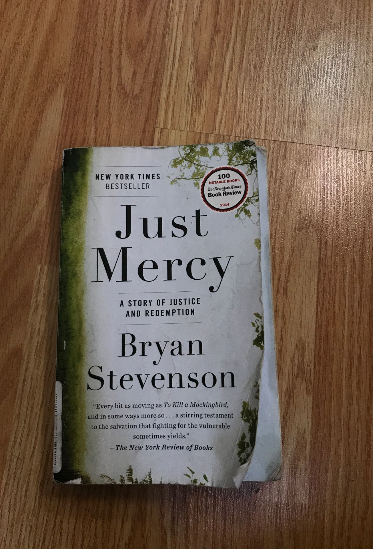 Just Mercy book by Bryan Stevenson