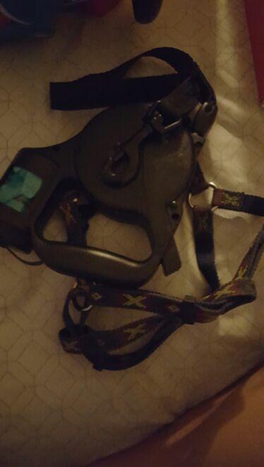 Dog leash with collar