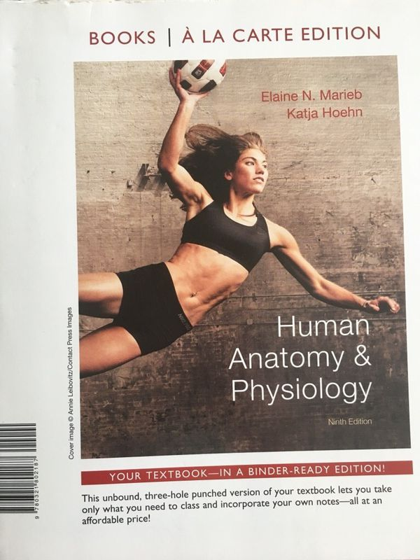 Human Anatomy and Physiology, Marieb and Horgan 9th Edition for Sale ...