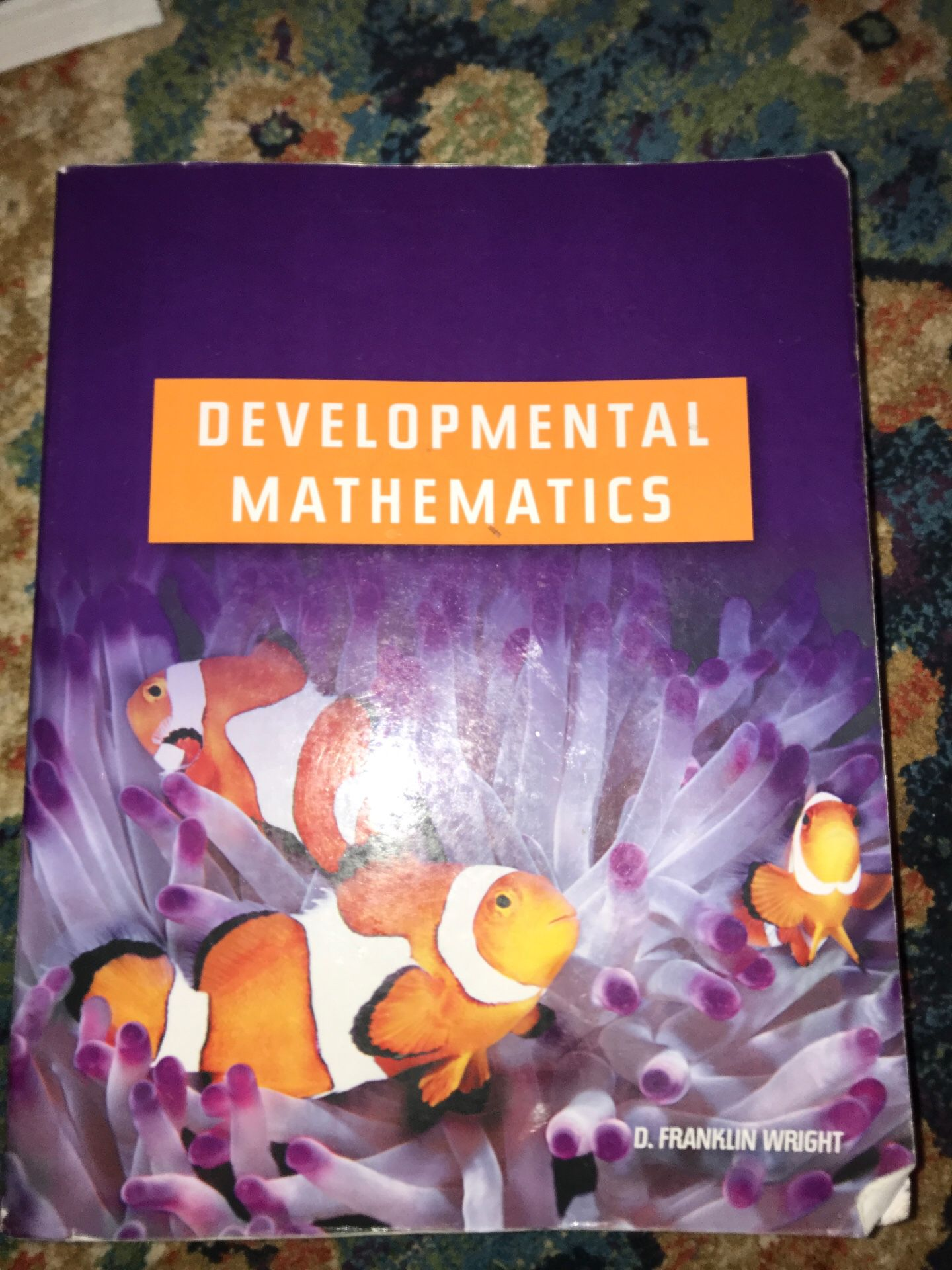 Developmental Mathematics book