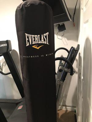 Everlast floor standing punching Bag for Sale in West McLean, VA