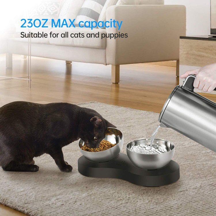 NEW Cat Bowls for Food and Water