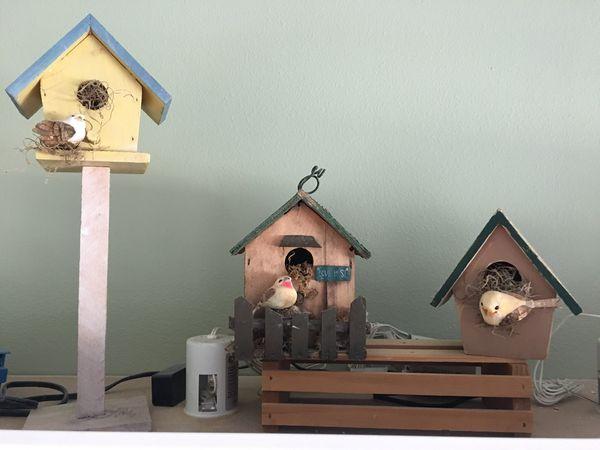 3 Different Designs Home Decor BIRDHOUSES