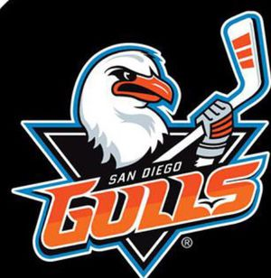 San Diego Gulls Tickets - Lower Level for Sale in San Diego, CA
