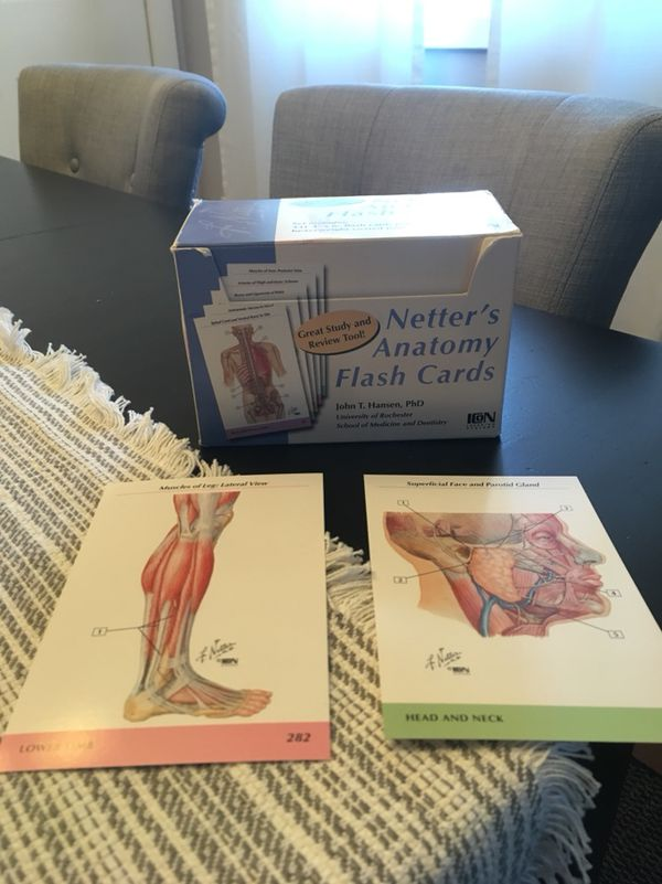 Netter\'s Anatomy Flash Cards for Sale in Eagan, MN - OfferUp