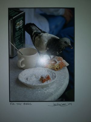 Photo For the birds signed lithograph