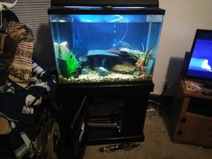 Very nice fish tank and stand with plenty of extras asking 175 obo will negotiate need new filter system and new water heater serious inquiry only for Sale in Indianapolis, IN