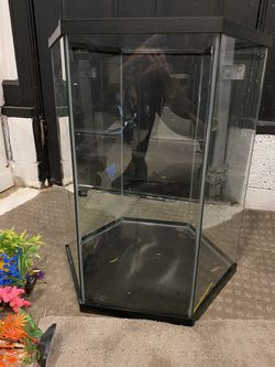 Used Top Fin Hexagon  Aquarium 20 Gallon Thumbnail