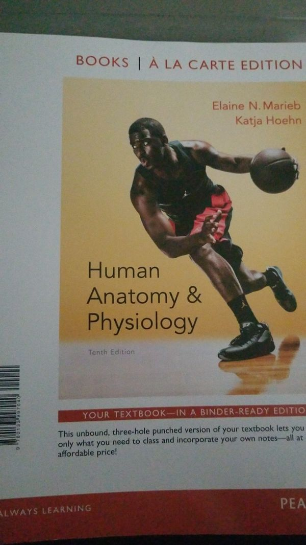 Human Anatomy & Physiology Tenth Edition (Books & Magazines) in Land ...
