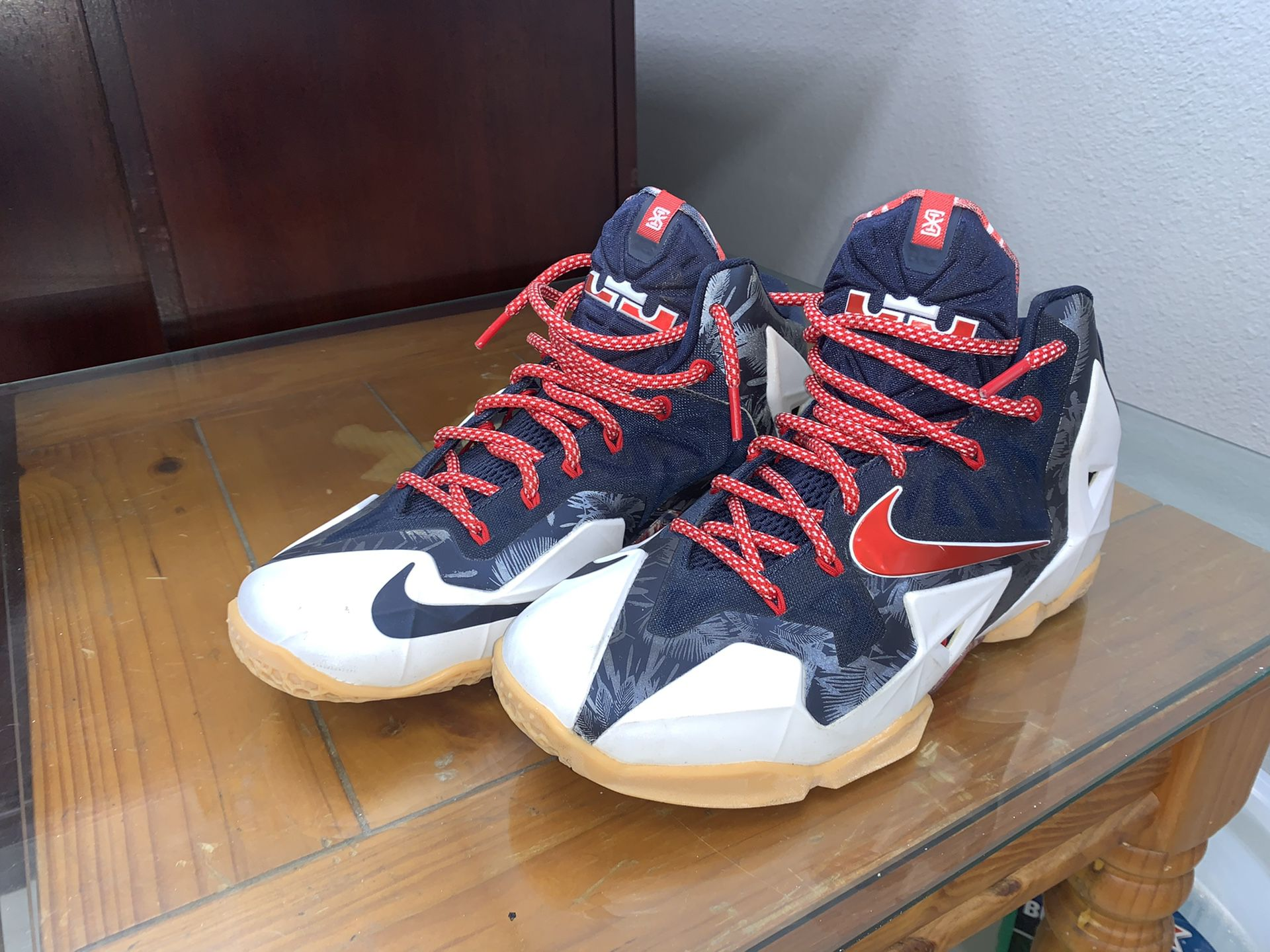 LeBron 11 Independence Day