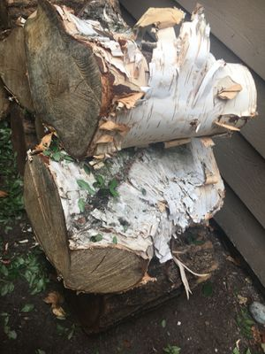 tree stumps for sale in lynnwood wa - Tree Stumps For Sale