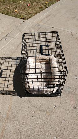 Small animal cage, with cushion . Thumbnail