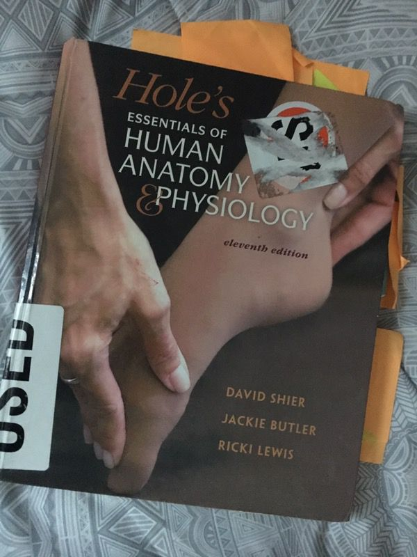 Holes Essentials Of Human Anatomy Physiology For Sale In Norwalk