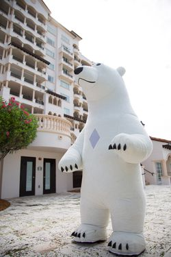 Polar Bear, Birthday character,entertainment for kids Thumbnail