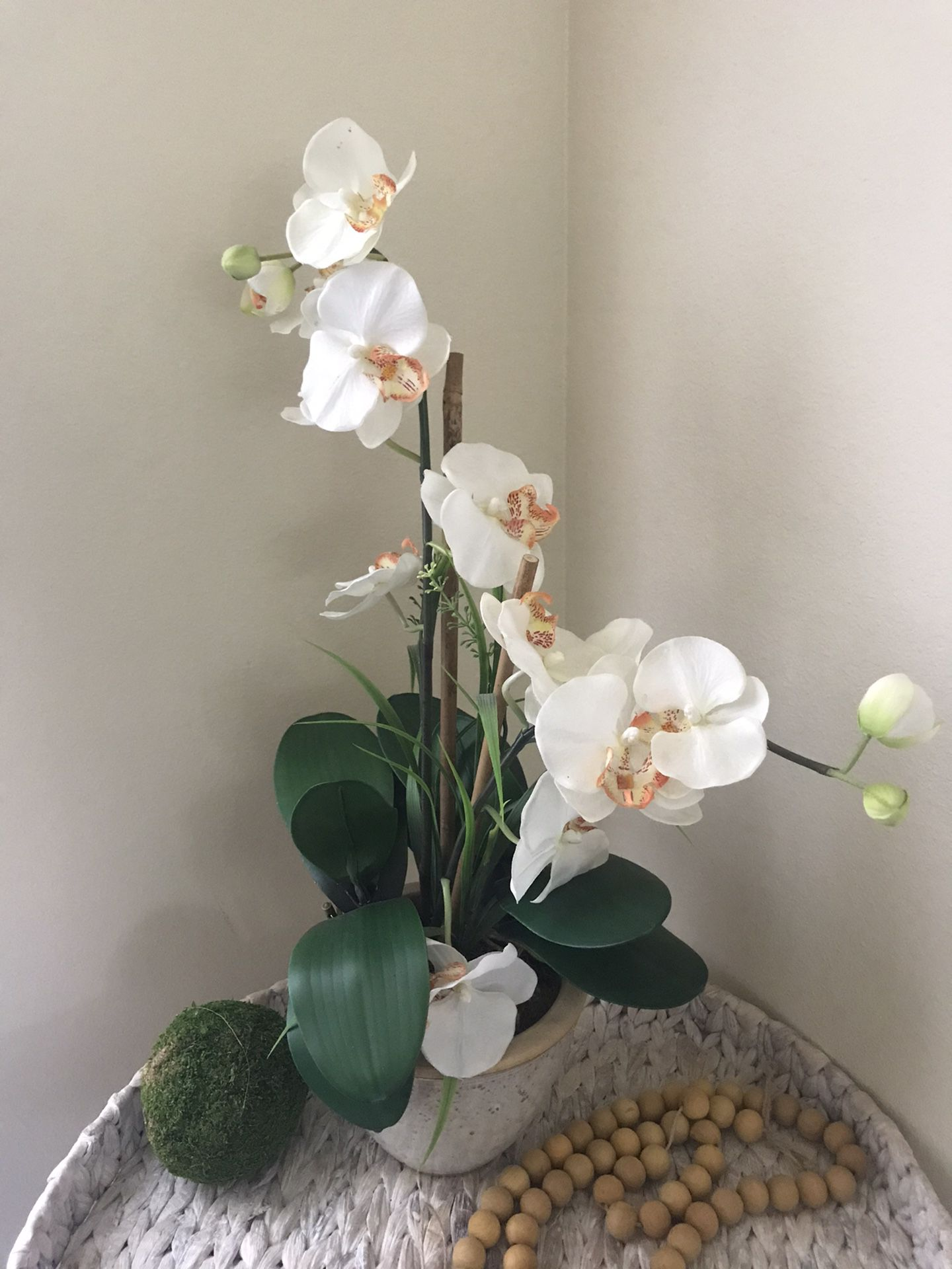 Orchid Decor With The Base