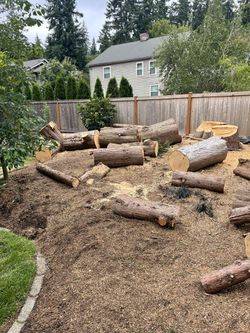 Free Firewood Logs Thumbnail