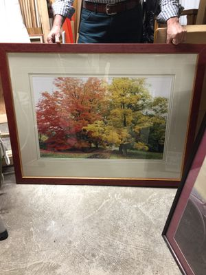 *PRICE DROP* 8x Framed Seasonal Photos for Sale in Boston, MA