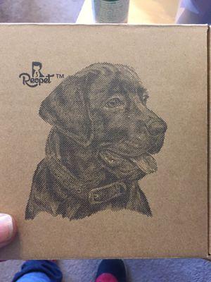Premium dog collar for Sale in Blackwood, NJ