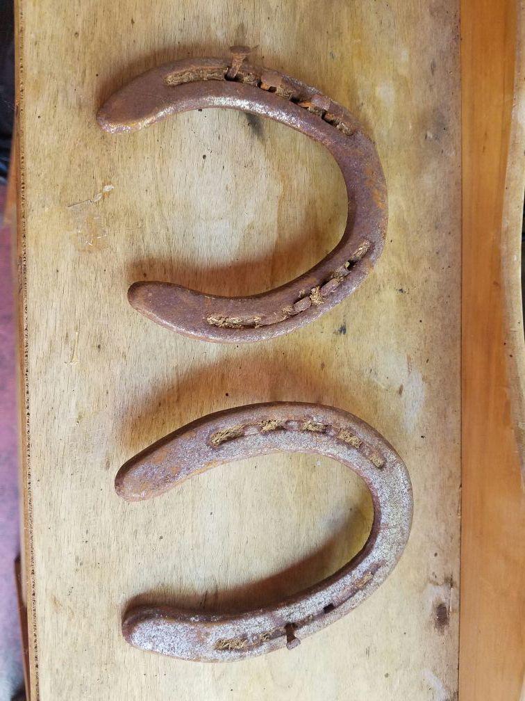 Antique horse shoes