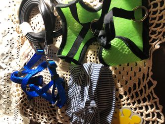 Under 5lbs dogs leash and harness Thumbnail