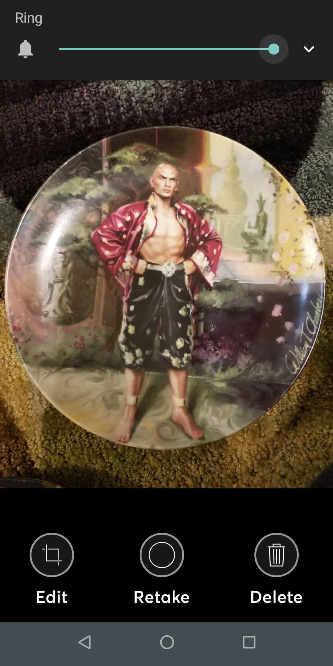 Set of 4 Collectors Plate The King & I