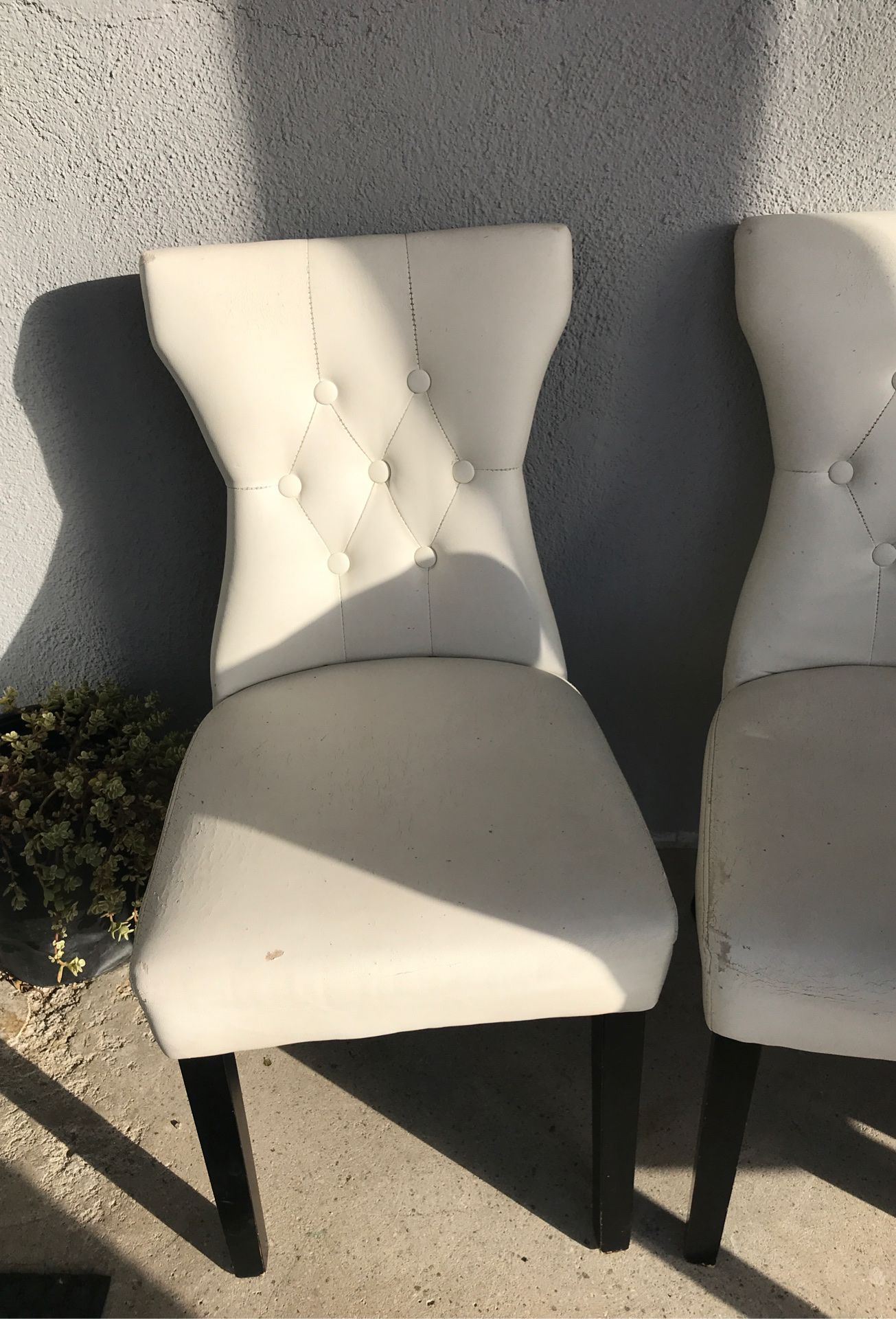 White and black chairs