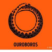 Ouroboros-Gal