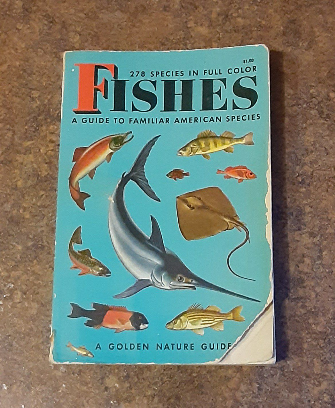 Vintage 1955 Fishes Miniature Softcover Children's Book