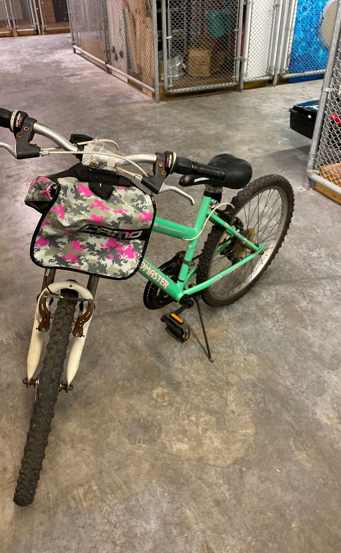 "Girls bike ""road master"""