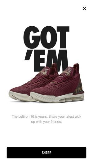 "Nike LeBron 16 ""King"" for Sale in Powell, OH"