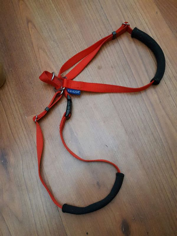 Zanusa Gental Training Harnesses For Doberman Size Dog For Sale In