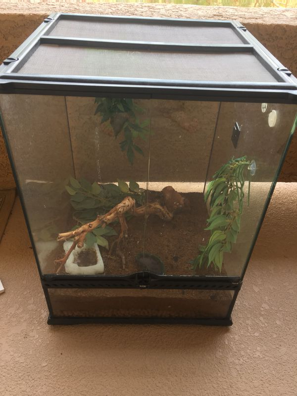 Gecko Exo Terra Terrarium 18 18 24 For Sale In Las Vegas Nv Offerup