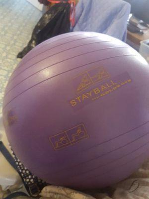 Exercise Ball for Sale in Denver, CO