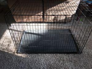 Photo Dog Crate (L)48in X (W)29in X (H)32in