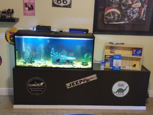 55 gal aquarium for Sale in Orlando, FL