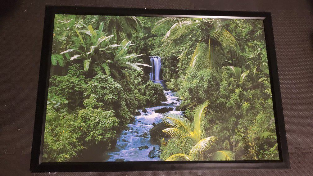 """Nature Framed Posters (30""""x42"""")"""