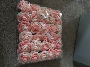 Photo Pink and White Roses
