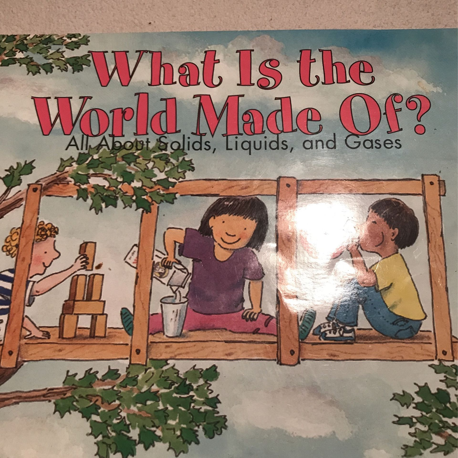 What Is The World Made Of? Book
