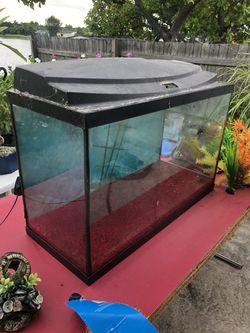 Fish tank Thumbnail