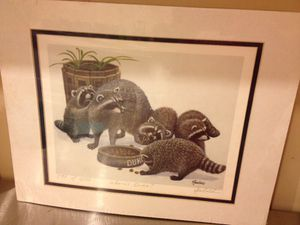Print of raccoons for sale  Claremore, OK