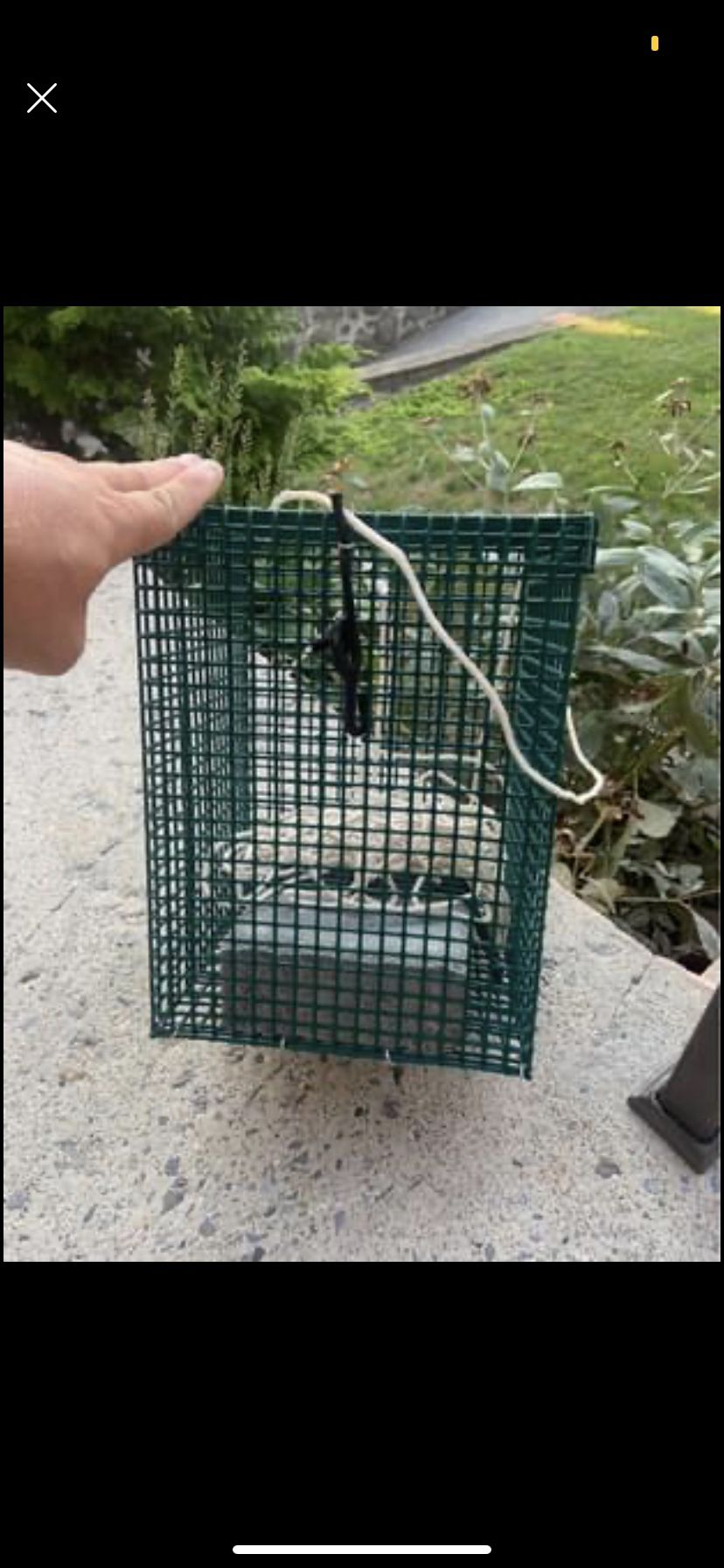 Weighted Clam Chum Cage For Fishing