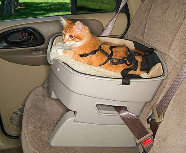 Pet Dog Cat Car Seat For Sale In Phoenix AZ