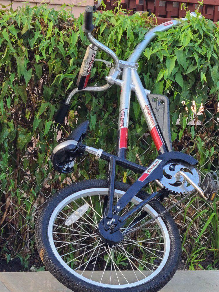 extensión de vicicleta