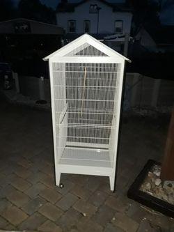 Bird Cage Thumbnail