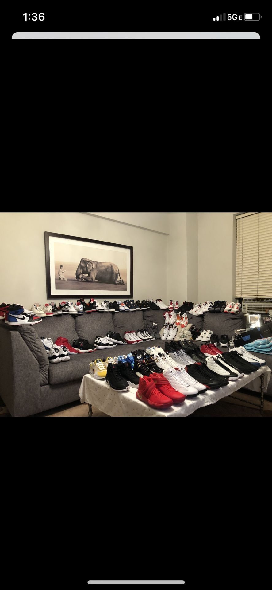 Sneaker collection, DS Size 8.5 All Exclusives