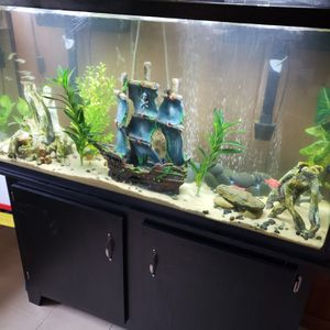 New and Used Fish tanks for Sale in Greensboro, NC - OfferUp